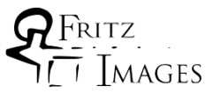 FritzImages | FritzImages October 2012 Gallery | image name = FritzImages Two Words r2 250x106