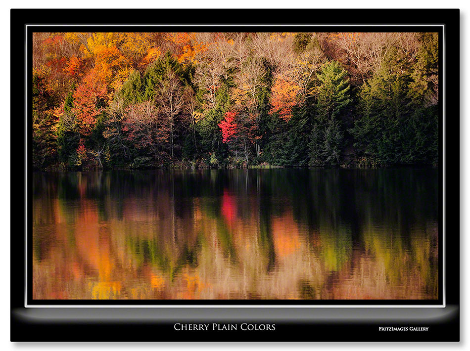 FritzImages | First Look Nikon SB 910 | image name = Cherry Plain Colors1