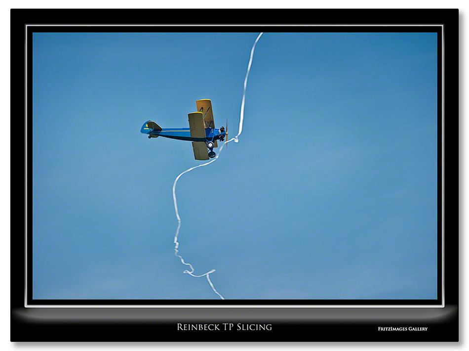 FritzImages | Larus smithsonianus | image name = Reinbeck TP Slicing