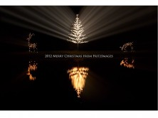 FritzImages | Simple Chickadee | image name = 2012 Merry Christmas r3 222x166
