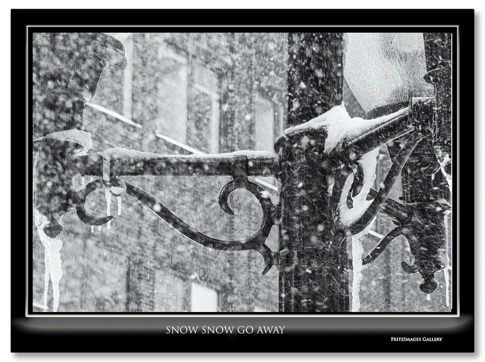 FritzImages | Nikon D4s Shipping Today | image name = FI 20140214 Albany Snow Snow Go Away H IO