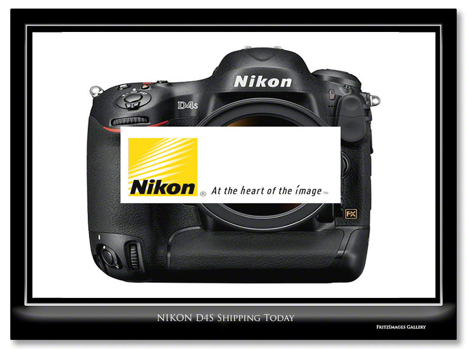 FritzImages | Nikon D4s Shipping Today | image name = FI Nikon D4S Shipping Today IO1