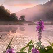 FritzImages | FritzImages 2014 August Blog | image name = FI 20140819 0031 Berkshire Moment 180x180