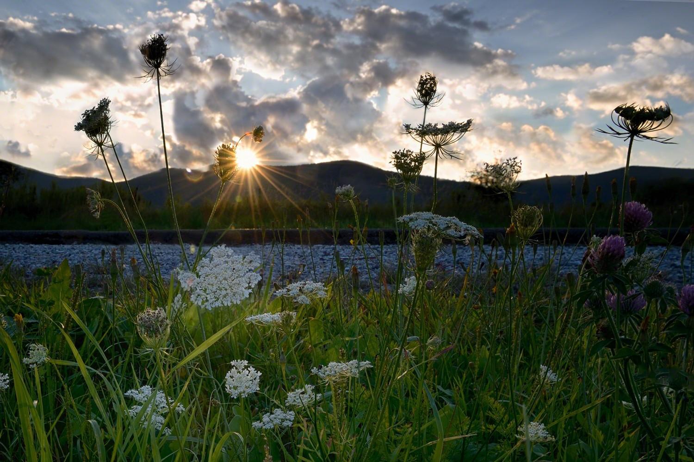 Image of Mount Greylock Moment by photographer ed Fritz