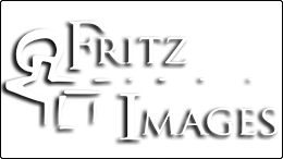 FritzImages | Fritzimages 2015 May Blog | image name = FritzImages Transparency white 260x146 IOP2
