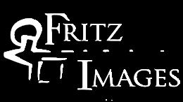 FritzImages | Desoto Stumped | image name = FritzImages Transparency white 260x146 IOP2