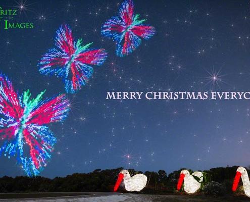 FritzImages   Desoto Spoonbill Sunrise Trance   image name = FI FMA Merry Christmas web950 IOP 495x400